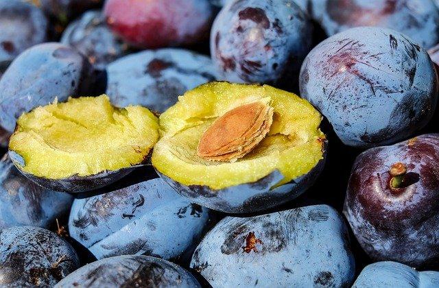 fruits stone